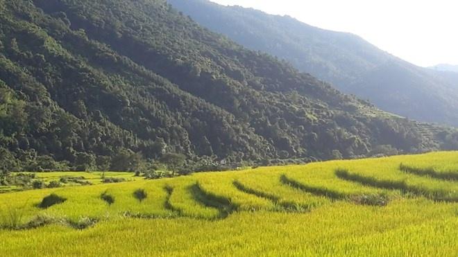'Sa Pa o Quang Ninh' hinh anh 6