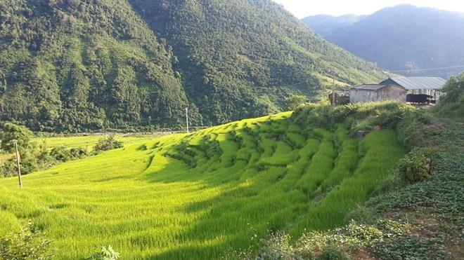 'Sa Pa o Quang Ninh' hinh anh 7
