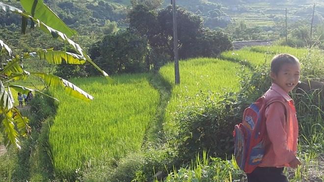 'Sa Pa o Quang Ninh' hinh anh 8