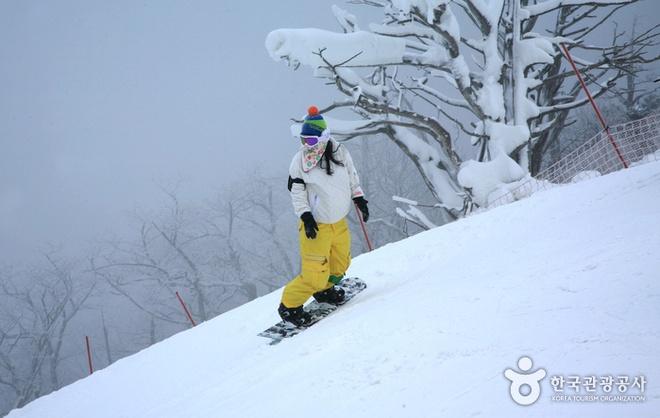 Nhung diem du lich nuoc ngoai tuyet voi cho mua dong hinh anh 1 Trượt tuyết ở núi Deogyusan. Ảnh: English.visitkorea.or.kr.