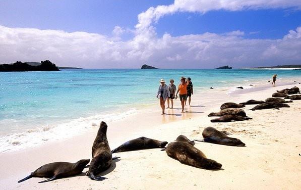 Kham pha ve dep quan dao Galapagos hinh anh 1