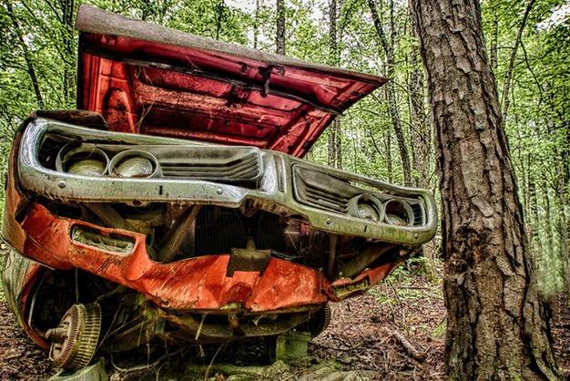 Lac trong nghia dia xe co ky la nhat the gioi hinh anh 11 Một trong những chiếc xe ưa thích của Lewis là chiếc xe tải Ford đời 1946, được sử dụng trong bộ phim Vụ ám sát tại hạt Coweta vào năm 1983.