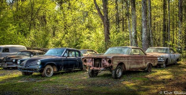 Lac trong nghia dia xe co ky la nhat the gioi hinh anh 12 Những năm tiếp theo chứng kiến sự phát triển mạnh mẽ của thành phố xe cũ. Dean phải mua thêm đất để giữ những chiếc xe còn lại. Lúc đầu, Dean phải bán bớt vài chiếc xe.
