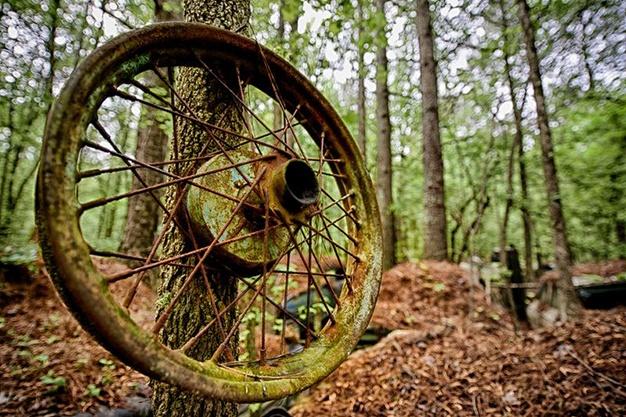 Lac trong nghia dia xe co ky la nhat the gioi hinh anh 16 Những chiếc bánh xe cũ được sử dụng trang trí trên cây.