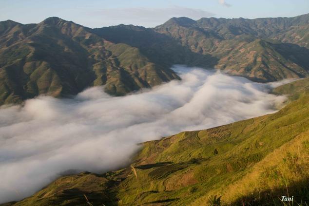 Dai duong may menh mong tren dinh Ta Xua - Son La hinh anh 10 Những ruộng bậc thang và những con đường chìm trong Biển Mây.