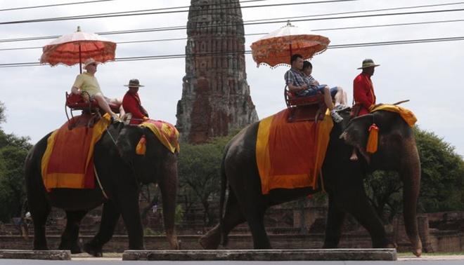 Thai Lan: voi giay chet du khach Anh hinh anh