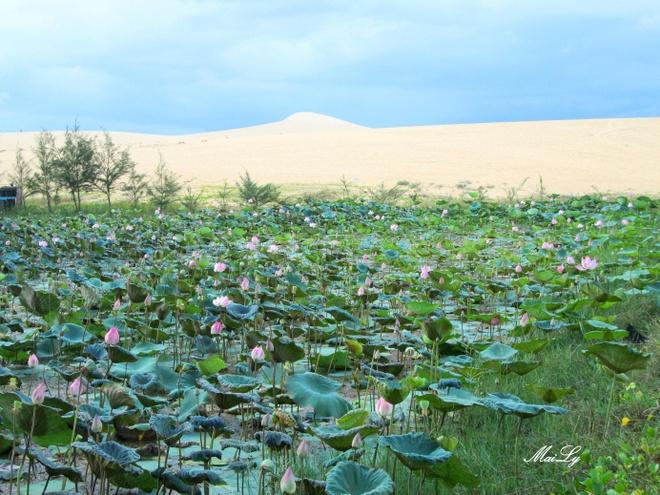 Cao nguyen Hoa Thang: can coi ma mat lanh hinh anh 14