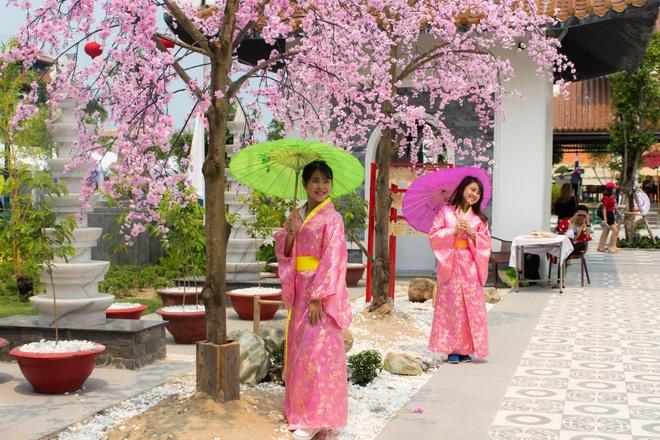 Gioi tre Da Nang dien kimono du hoi hoa anh dao hinh anh 2
