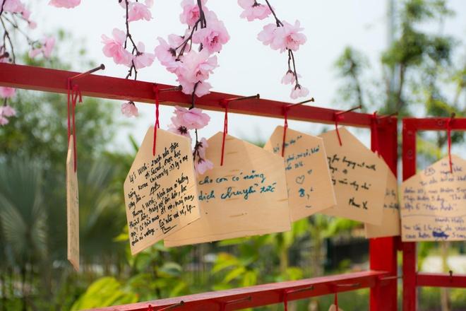 Gioi tre Da Nang dien kimono du hoi hoa anh dao hinh anh 10