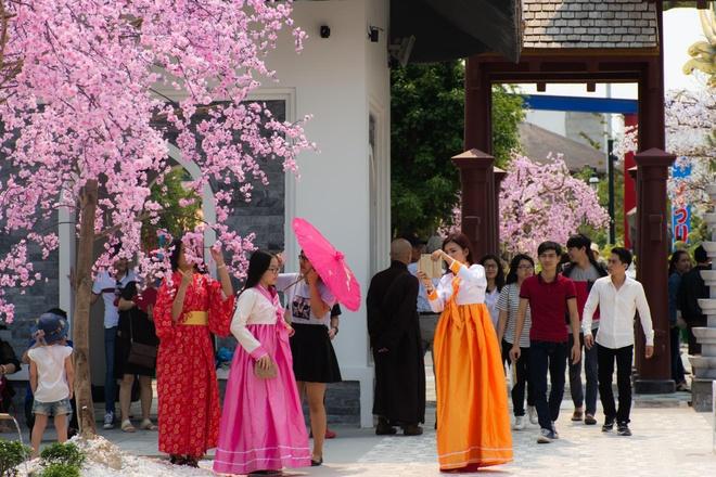 Gioi tre Da Nang dien kimono du hoi hoa anh dao hinh anh 11