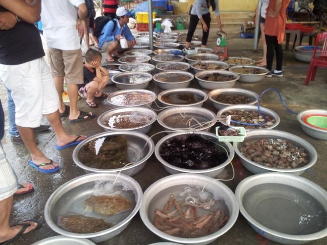kinh nghiem du lich Cu Lao Cham anh 3