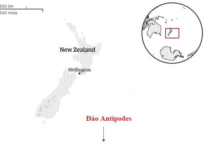 "New Zealand gui binh si tieu diet ""chuot trieu USD"" hinh anh 2"