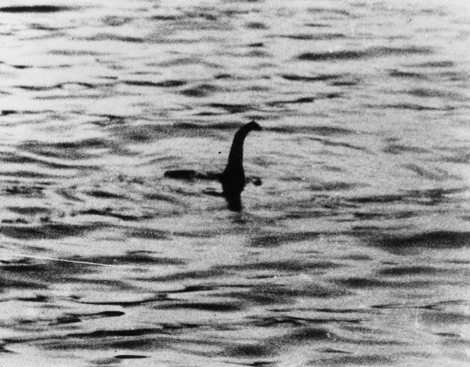 Quai vat ho Loch Ness co the la con ca da tron khong lo? hinh anh 1