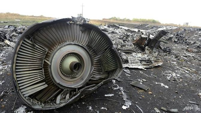 Malaysia: Chua the ket luan Nga chiu trach nhiem vu ban roi MH17 hinh anh