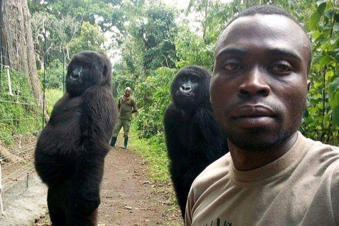 Khi dot bat chuoc nguoi, selfie cung kiem lam o Congo hinh anh 1