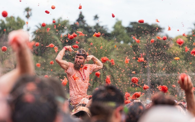 Dung 40 tan ca chua de nem nhau hinh anh 7 Cuộc chiến ném cà chua La Tomatina bị cấm ở bang Karnataka, Ấn Độ năm 2011 sau khi công chúng phẫn nộ về việc lãng phí thực phẩm.
