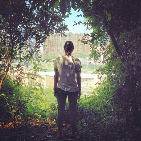 24 gio met nhoai o Hong Kong hinh anh 4 9h: Đi bộ ở đường Bowen, một con đường dài 4 km từ MidLevels tới Happy Valley. Con đường này rất quen thuộc với những người chạy bộ hoặc dắt chó đi dạo do rợp bóng cây xanh và có thể ngắm đảo Hong Kong cùng những địa danh lịch sử dọc đường.