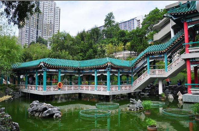 Nhung diem den tam linh tai Hong Kong hinh anh 10 Tới miếu Hoàng Đại Tiên, du khách cũng có thể đến vườn ước nguyện để ngắm cầu bộ hành nên thơ với mái ngói xanh và hồ cảnh thanh tịnh đầy những chú cá chép và cụ rùa. Ảnh: Sina