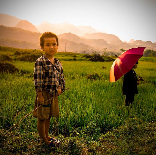 """Viet Nam tuyet dep qua ong kinh khach Tay hinh anh 8 Tôi dành 4 ngày lái xe ở miền bắc Việt Nam và phát hiện ra một nơi tuyệt đẹp. Tôi lái xe qua những cánh đồng lúa và qua những ngọn núi, trò chuyện với những người thực tế và tốt bụng nhất tôi từng gặp. Tôi chụp tấm ảnh này bên lề đường vùng nông thôn. Đó là """"giờ vàng"""" ở """"vùng đất vàng""""."""