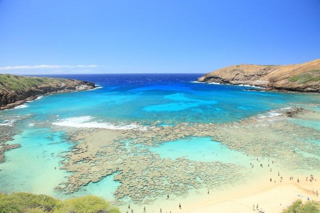 Mui Ne - thien duong khong co Wi-Fi hinh anh 9 9. Vịnh Hanauma, Hawaii là khu bảo tồn thiên nhiên với những dải san hô tuyệt đẹp.