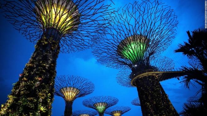 Vi sao Singapore tro thanh thoi nam cham hut khach? hinh anh 3 3. Không gian xanh: Đây là nơi có thác nước trong nhà cao nhất thế giới, những cây nhân tạo khổng lồ, những nhà kính không cột, hay con đường bộ hành xanh mướt. Singapore có 18 cây nhân tạo, cao từ 25 – 50 m tạo thành cảnh quan độc đáo.