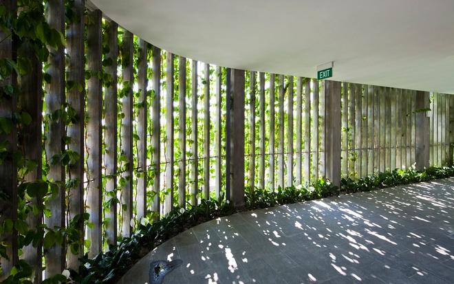 """Bao Tay ca ngoi khong gian xanh mat cua Naman Da Nang hinh anh 5 Mặt tiền của Naman Retreat là """"vườn treo Babylon"""" gồm các loại cây bản địa và nho, khiến khu nghỉ dưỡng được ngăn cách với đường phố và tăng cường sự riêng tư cho du khách."""