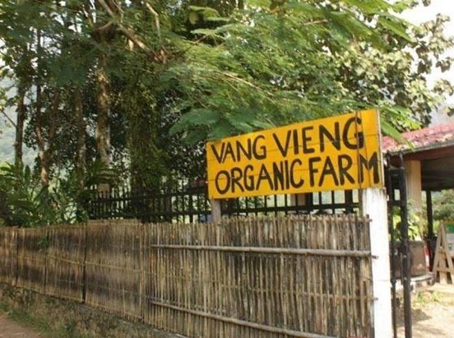 """An re, o mien phi, phuot qua Viet Nam va cac nuoc Dong Nam A hinh anh 11 9. Làm việc trong trang trại: Hatton từng làm việc trong một số trang trại để đổi lấy chỗ ở trên hành trình của mình. """"Tôi giúp việc ở Organic Farm, Vang Viang, Lào. Ở miền bắc Lào bên ngoài Luang Prabang, tôi còn giúp một gia đình địa phương thu hoạch lúa gần một ngôi làng nhỏ ở Nong Khiaw. Tôi ở homestay và không có nhiều tiền, vì vậy tôi hỏi họ liệu tôi có thể trả tiền ăn và đổi sức lao động lấy chỗ ở không, và họ vui vẻ đồng ý""""."""
