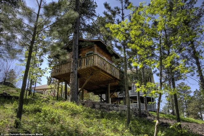 Ngoi nha danh cho fan cuong cua nguoi Hobbit hinh anh 5 Căn nhà có diện tích 37 m2, được xây dựng giữa 2 cây thông cao chót vót.