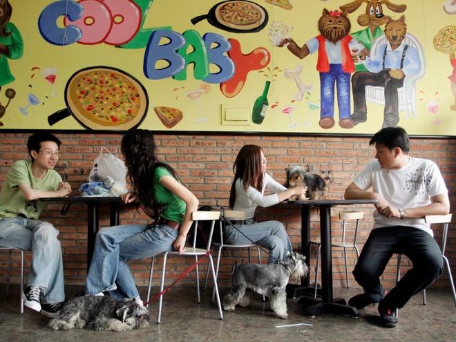 Nhung nha hang hut khach voi phong cach quai chieu hinh anh 3 Nhà hàng đặc biệt dành cho chó có tên Coolbaby ở Bắc Kinh, Trung Quốc. Các món ăn ở đây được chế biến cho từng giống chó, từng độ tuổi và kích cỡ một cách khoa học.
