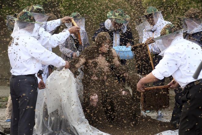 Nhung ky luc ky quac nhat qua dat hinh anh 1 Ngày 25/7/2014 tại Taian, Trung Quốc, một người đàn ông có tên Gao Bingguo lập kỷ lục thế giới với số lượng 326.000 con ong bay vù vù xung quanh và bám đầy trên người.