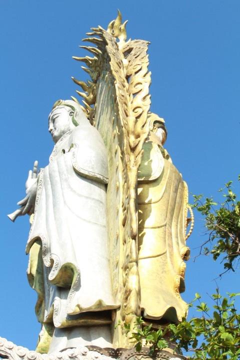 Dam chim trong thien duong Quy Nhon - Cu Lao Xanh hinh anh 5