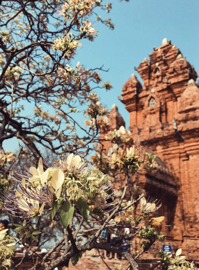 Kham pha hang Rai anh 2