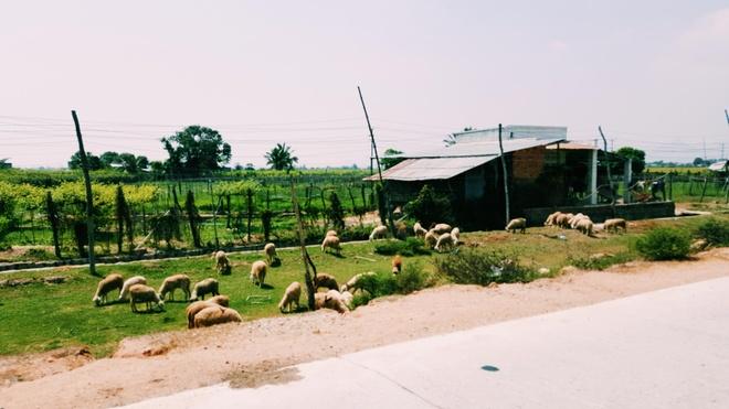 Kham pha hang Rai anh 4