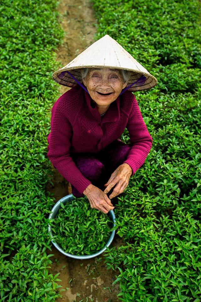 Trien lam anh 'Phu nu Viet Nam' tren duong pho Hoi An hinh anh 3