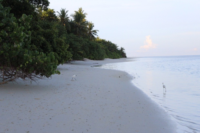 Maldives hut tu dan phuot den khach hang sang hinh anh 8