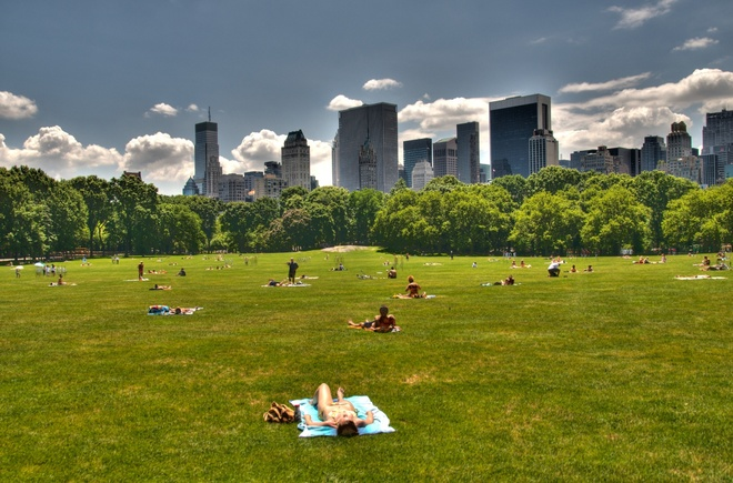 Bi mat ve cong vien Central Park o New York hinh anh 2