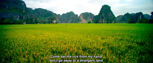 Canh dep Ninh Binh trong phim anh anh 5