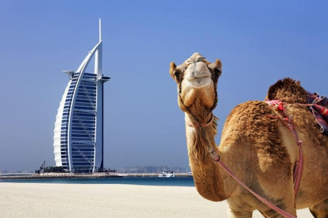 Nhung dieu can biet truoc khi dap chuyen bay den Dubai hinh anh