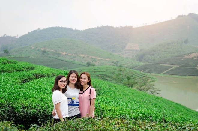 Dao che Nghe An anh 1
