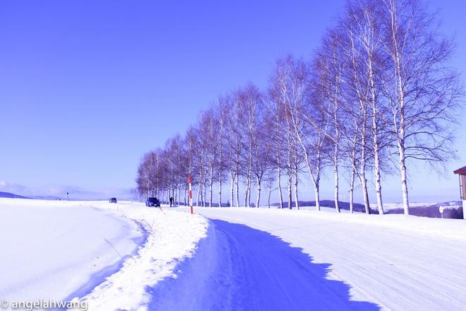 Tuyet phu trang Hokkaido anh 1