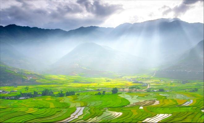 Ban giam khao 'Dau an Viet Nam': Van cho doi buc anh that xuat sac hinh anh 5