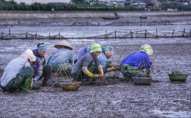 Di Doc Viet Nam Tham Nhung Lang Chai Ven Bien Hinh Anh 3