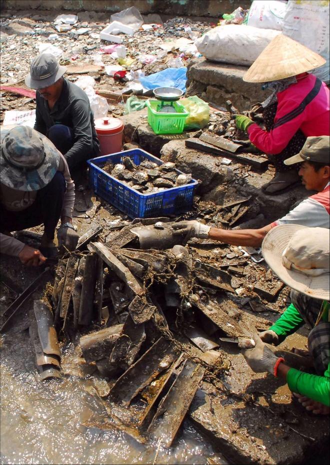 Dao Thanh An yen binh trong bo anh Dau an Viet Nam anh 7
