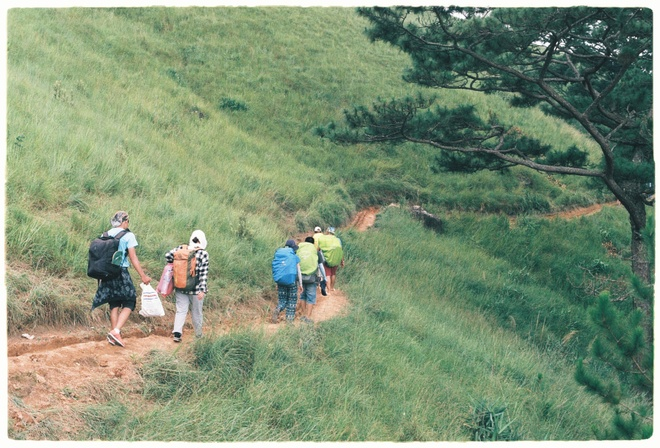 Cung trek dep nhat,  Lam Dong,  Binh Thuan,  an trua trong rung anh 8