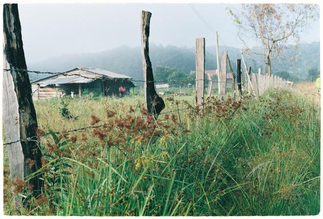 Cung trek dep nhat,  Lam Dong,  Binh Thuan,  an trua trong rung anh 2