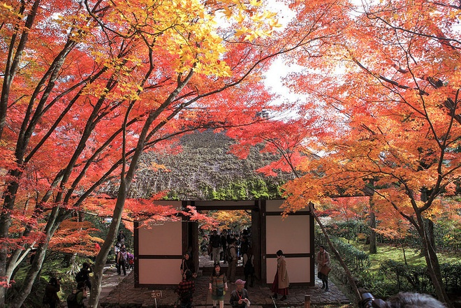 15 dia diem ngam la do tuyet dep o co do Kyoto hinh anh 11