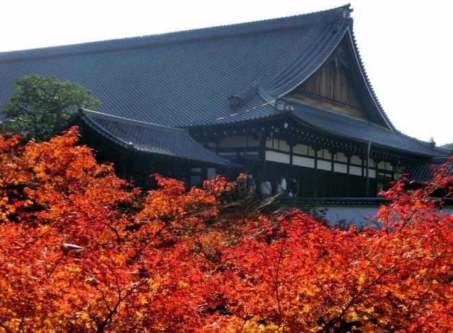 15 dia diem ngam la do tuyet dep o co do Kyoto hinh anh 12