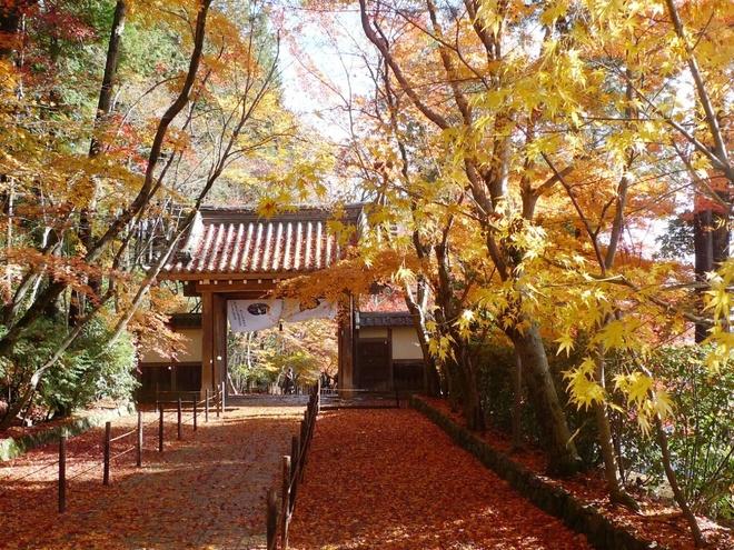 15 dia diem ngam la do tuyet dep o co do Kyoto hinh anh 2