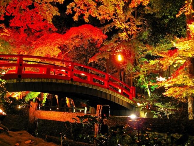 15 dia diem ngam la do tuyet dep o co do Kyoto hinh anh 4