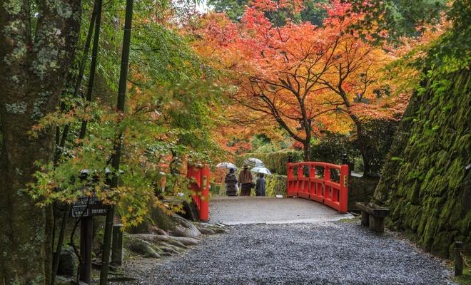 15 dia diem ngam la do tuyet dep o co do Kyoto hinh anh 8
